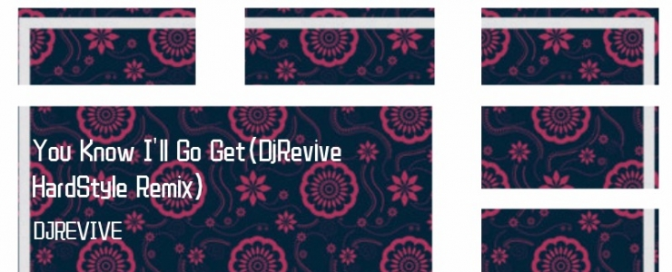 黑人抬棺You Know I'll Go Get(DjRevive HardStyle Remix)